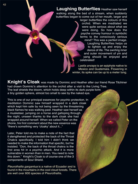 Orchid Essence Healing Book -                           page 42