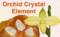 Orchid Crystal Element
