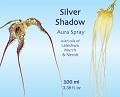 Silver Shadow blue